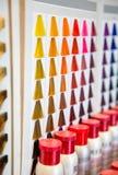A cor tingida cabelo protege a paleta no cabeleireiro Imagem de Stock Royalty Free