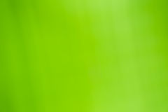 Cor verde do fundo abstrato Fotografia de Stock Royalty Free