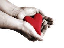 Coração à disposicão Foto de Stock Royalty Free