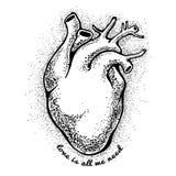 Coração anatômico preto o amor do tagline é tudo que nós precisamos Cartão do dia dos Valentim Ilustração do vetor, elementos par Fotos de Stock