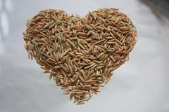 Coração, arroz, Imagens de Stock