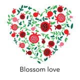 Coração bonito bonito com fundo da romã Ilustração do vetor ilustração stock