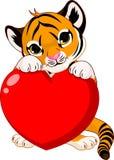 Coração bonito da terra arrendada do filhote de tigre Fotos de Stock Royalty Free