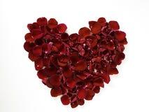 coração bonito das pétalas cor-de-rosa vermelhas no branco fotos de stock