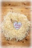 Coração bonito do amor em um ninho de amor Imagem de Stock Royalty Free
