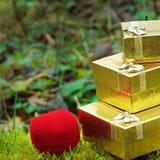 Coração bonito do dia de Valentim Fotografia de Stock Royalty Free