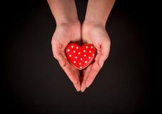 Coração bonito do pão-de-espécie Fotografia de Stock