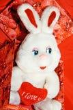 Coração branco do whit do coelho na caixa vermelha Foto de Stock Royalty Free
