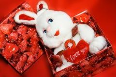 Coração branco do whit do coelho na caixa vermelha Imagens de Stock Royalty Free