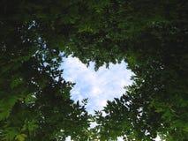 Coração celestial imagens de stock