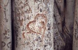 Coração cinzelado em um tronco de árvore fotografia de stock