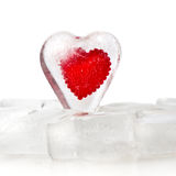 Coração congelado Imagens de Stock Royalty Free