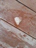 Coração congelado Fotos de Stock Royalty Free