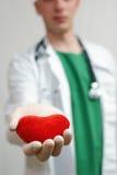Coração considerável novo da terra arrendada do doutor nas mãos Fotos de Stock Royalty Free
