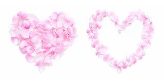 Coração cor-de-rosa das pétalas Foto de Stock