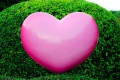 Coração cor-de-rosa no jardim Imagens de Stock