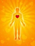 Coração, corpo & alma Foto de Stock