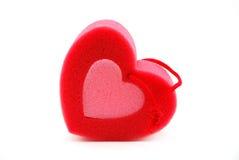 Coração da beleza Fotografia de Stock Royalty Free