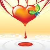 Coração da gota Fotografia de Stock