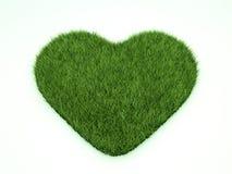Coração da grama Foto de Stock
