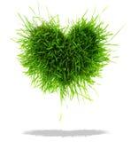 Coração da grama verde Foto de Stock Royalty Free