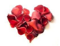 Coração da pétala de Rosa imagens de stock royalty free