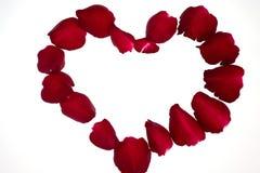 Coração da pétala de Rosa Imagens de Stock