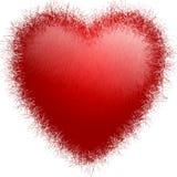 Coração da pele Ilustração Stock