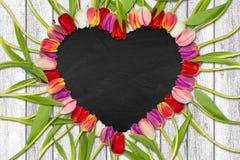 Coração dado forma fora das tulipas ilustração do vetor