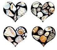 Coração das conchas do mar Ilustração tirada mão da aquarela ilustração royalty free