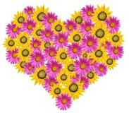 Coração das flores Fotografia de Stock