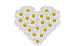 Coração das flores Imagem de Stock Royalty Free
