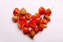 Coração das flores em um fundo branco Imagens de Stock