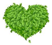 Coração das folhas verdes Imagens de Stock Royalty Free
