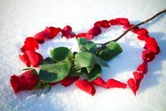 Coração das levantar-pétalas Imagens de Stock Royalty Free