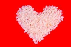 Coração das pétalas da cereja imagens de stock