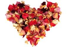 Coração das pétalas de Rosa Fotos de Stock Royalty Free