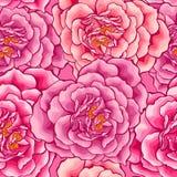 Coração das rosas sem emenda Fotos de Stock