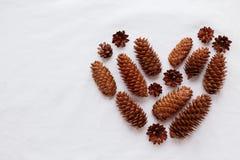 Coração de cones do pinho e de cones de abeto no fundo branco Foto de Stock Royalty Free