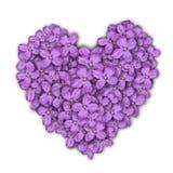 Coração de flores do lilac Cartão ao dia do ` s do Valentim Flores roxas Fotos de Stock Royalty Free