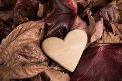 Coração de madeira nas folhas de outono Fotos de Stock