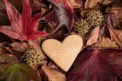 Coração de madeira no outono Fotografia de Stock