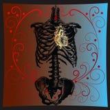Coração de ouro Imagem de Stock Royalty Free
