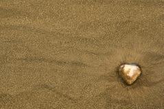Coração de ouro na areia Imagens de Stock