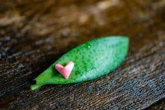 Coração de papel cor-de-rosa foto de stock