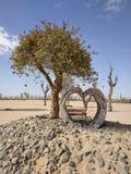 Coração de pedra e uma árvore de Bouganville imagens de stock royalty free