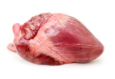 Coração de porco em um fundo branco imagem de stock