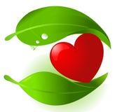 Coração de protecção do alimento vegetal ilustração stock