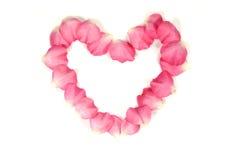 Coração de Rosa Fotos de Stock Royalty Free