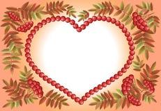 Coração de Rowan Imagens de Stock